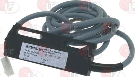 MAGNETIC MICROSWITCH 250V 3A