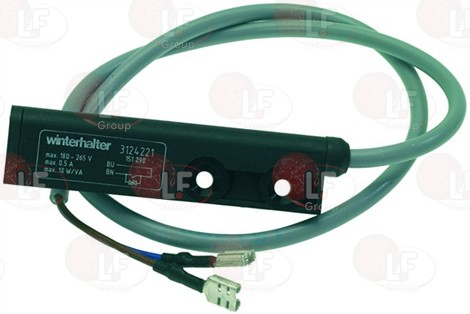MAGNETIC MICROSWITCH 250V