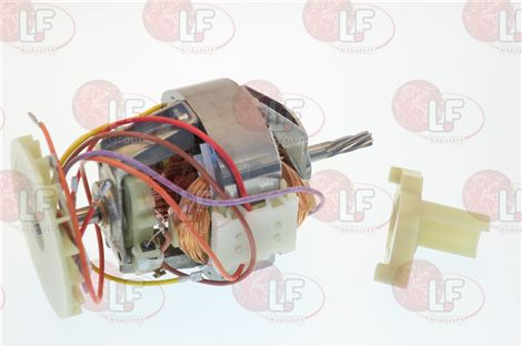 MOTOR ASSY 230V-WITH MOULDING